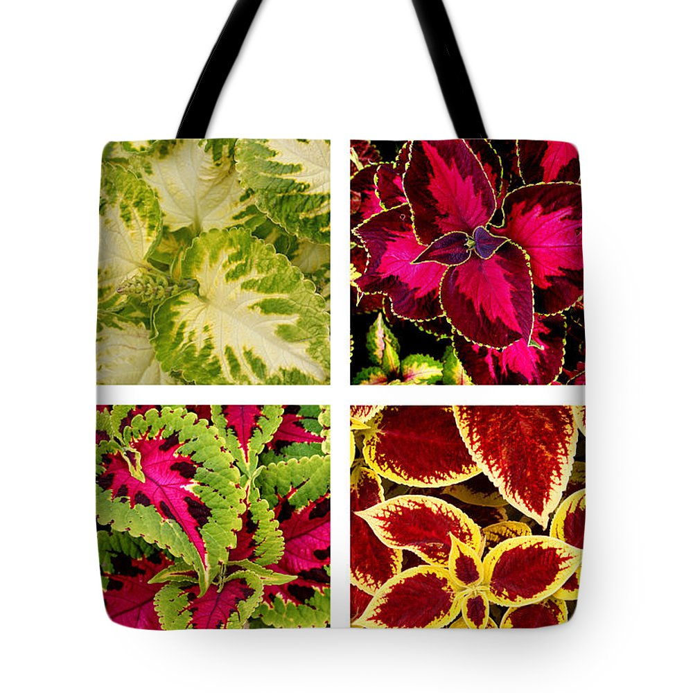 Coleus Tote Bag featuring the photograph Colorful Coleus by Art Block Collections