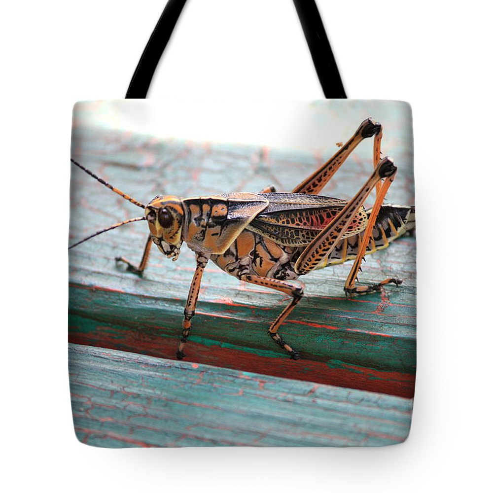 Insects Tote Bag featuring the photograph Colorful Grasshopper by Carol Groenen