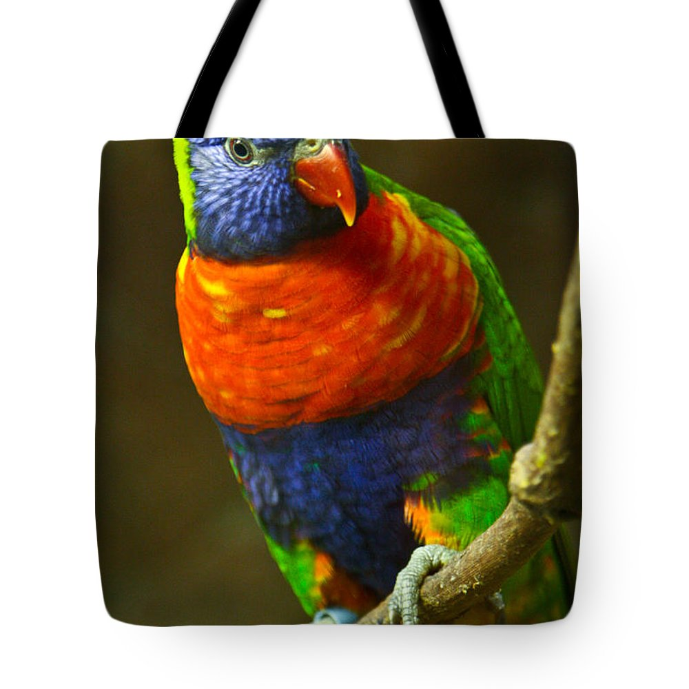 Colorful Tote Bag featuring the photograph Colorful Lorikeet by Douglas Barnett