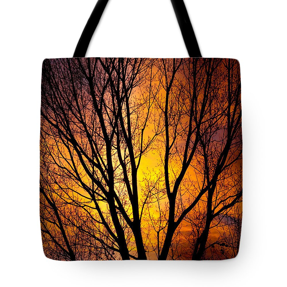 Vertical Tote Bag featuring the photograph Colorful Tree Silhouettes by James BO Insogna