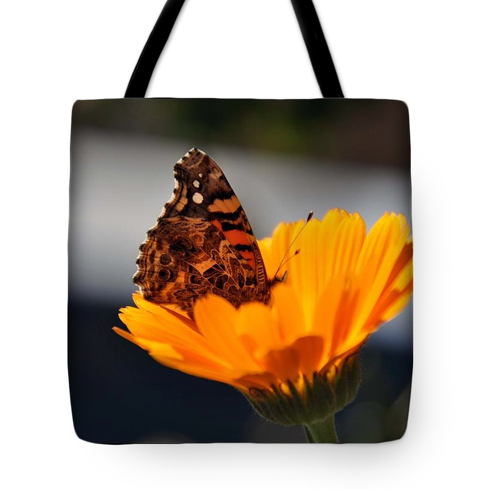 View Flower Colors Tote Bag featuring the photograph Colorful View by Stefan Pettersson