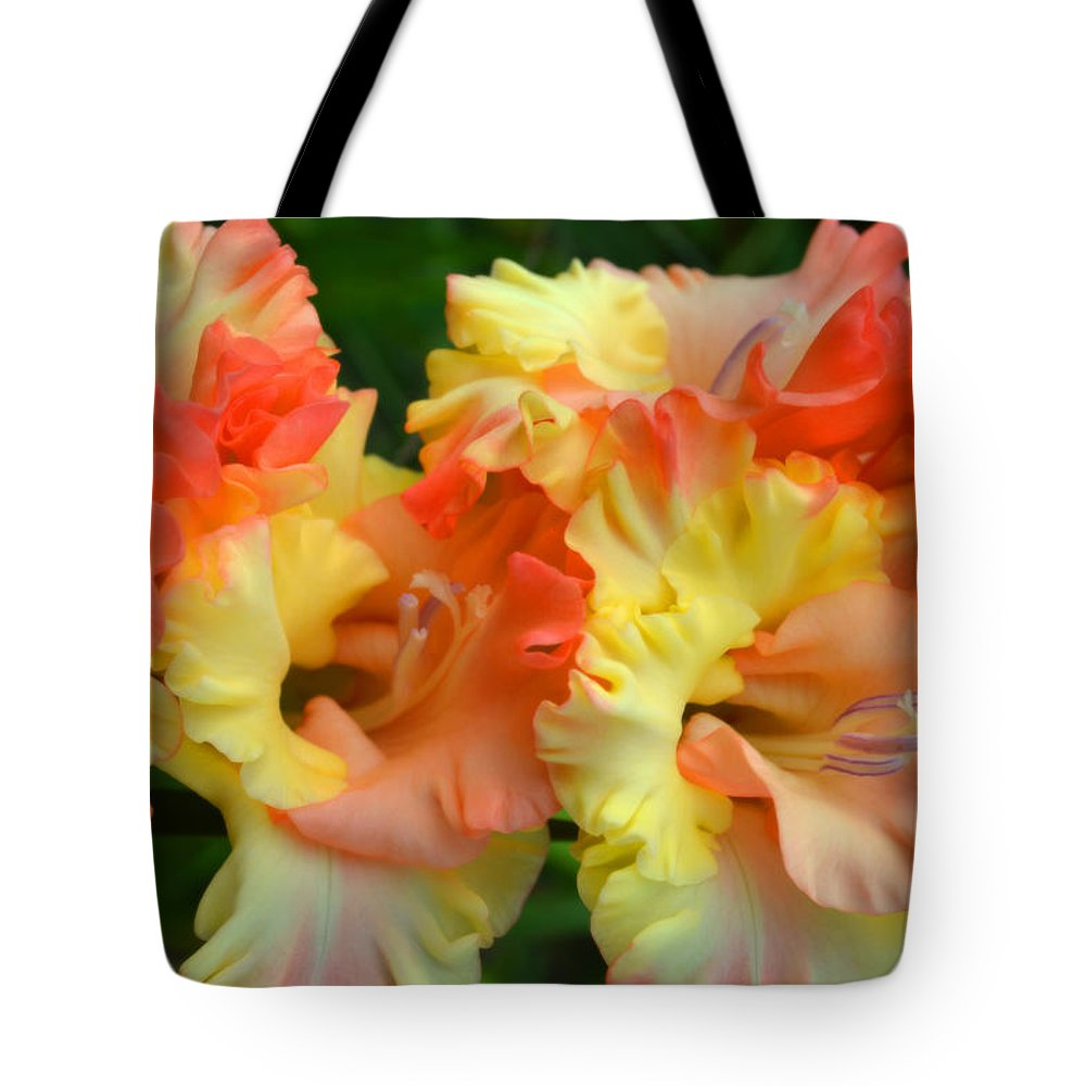 Gladiolas Tote Bag featuring the photograph Colors Of August by Dianne Cowen