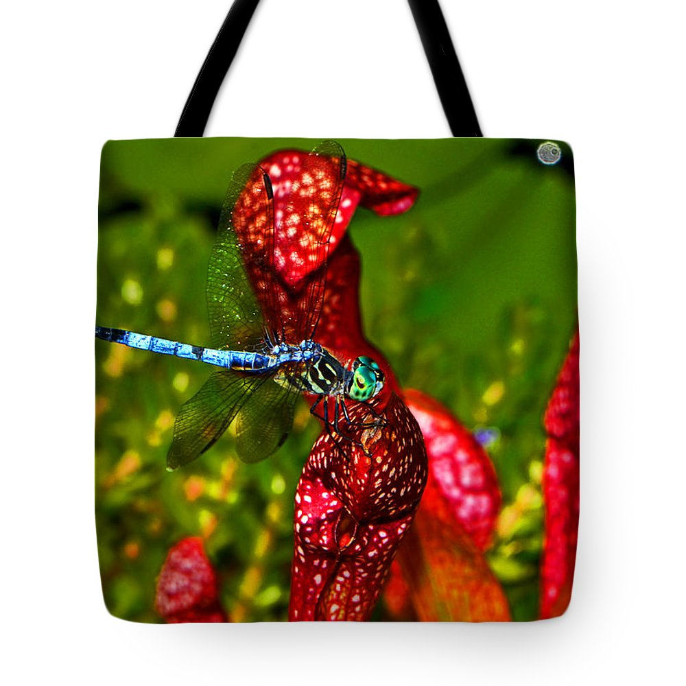 Pitcher Plant Tote Bag featuring the photograph Colors Of Nature - Profile Of A Dragonfly 003 by George Bostian