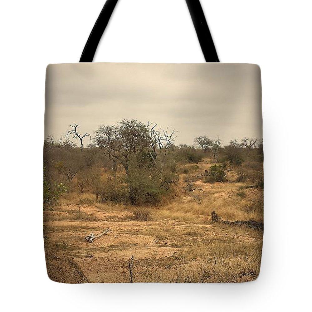 Safari. Krugar Tote Bag featuring the photograph Colourful Safari by Lisa Byrne