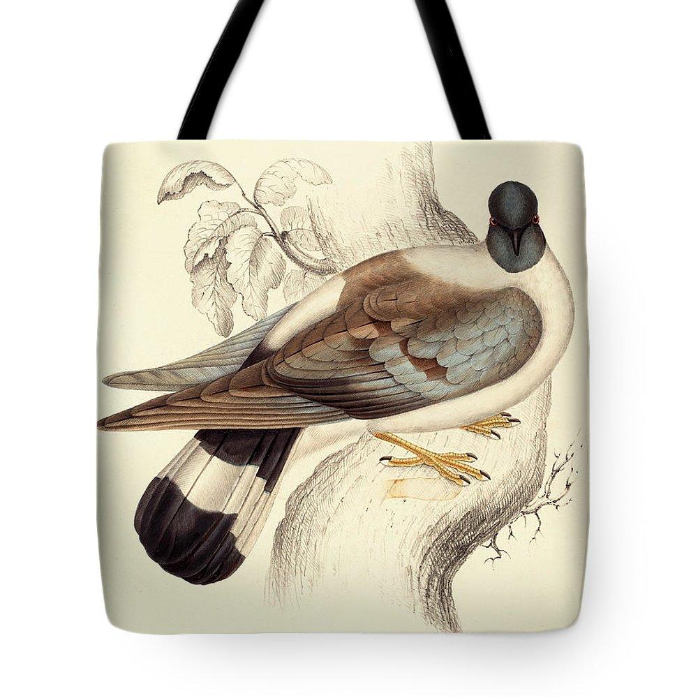 Pigeon Tote Bags