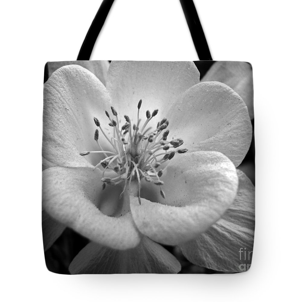 Flowers Tote Bag featuring the photograph Columbine by Amanda Barcon