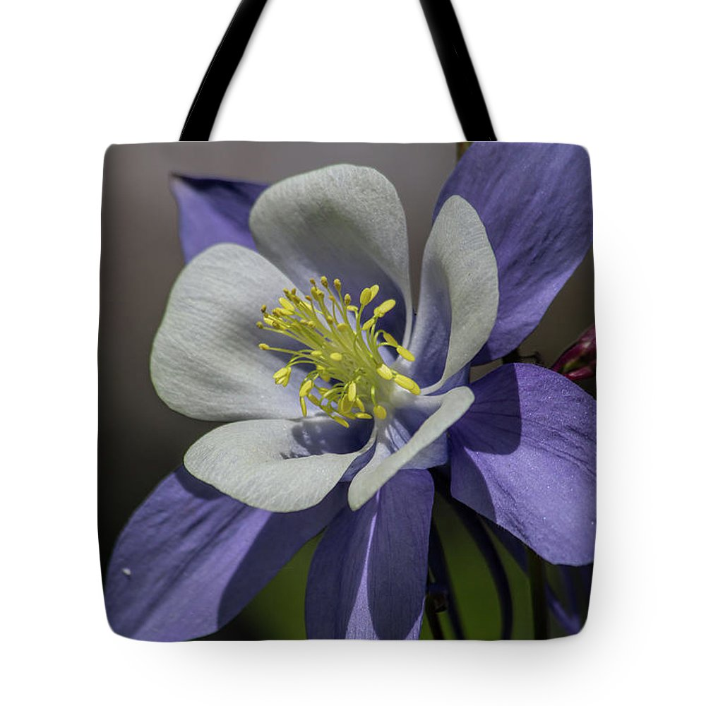 Flower Tote Bag featuring the photograph Columbine Blues by Alana Thrower