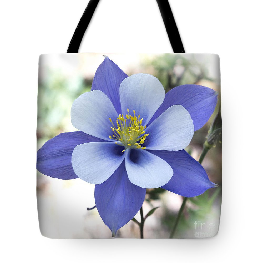 Columbine colorado state flower tote bag for sale by dennis wagner columbine flower tote bag featuring the photograph columbine colorado state flower by dennis wagner izmirmasajfo