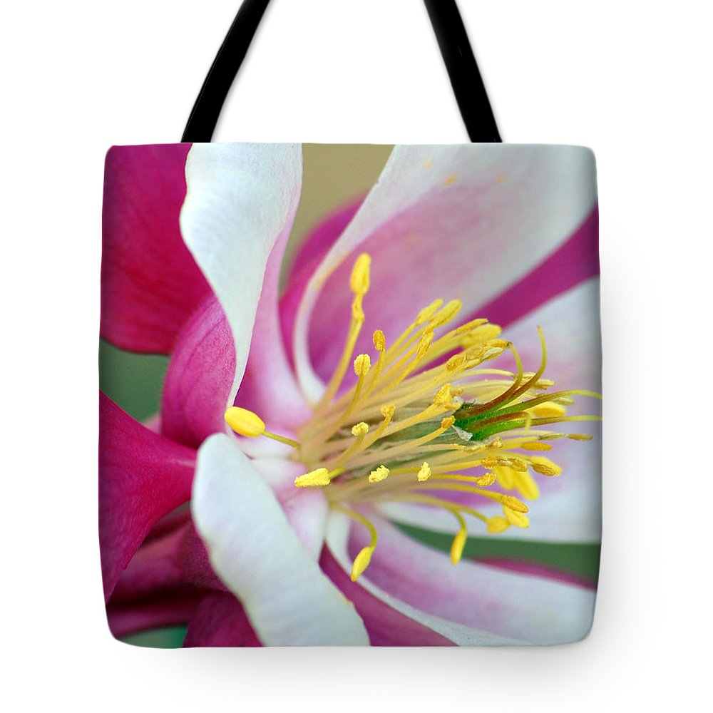 Columbine Tote Bag featuring the photograph Columbine Flower 2 by Amy Fose