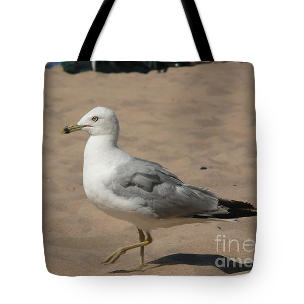 Bird Tote Bag featuring the photograph Come On Take The Picture Already by Barb Montanye Meseroll