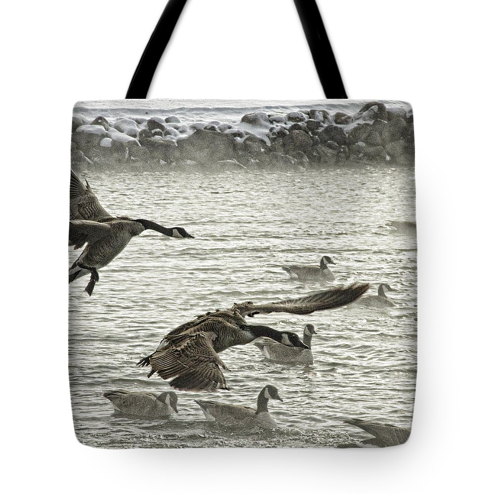 Goose Tote Bag featuring the photograph Coming In For Landing by Sissy Schneiderman