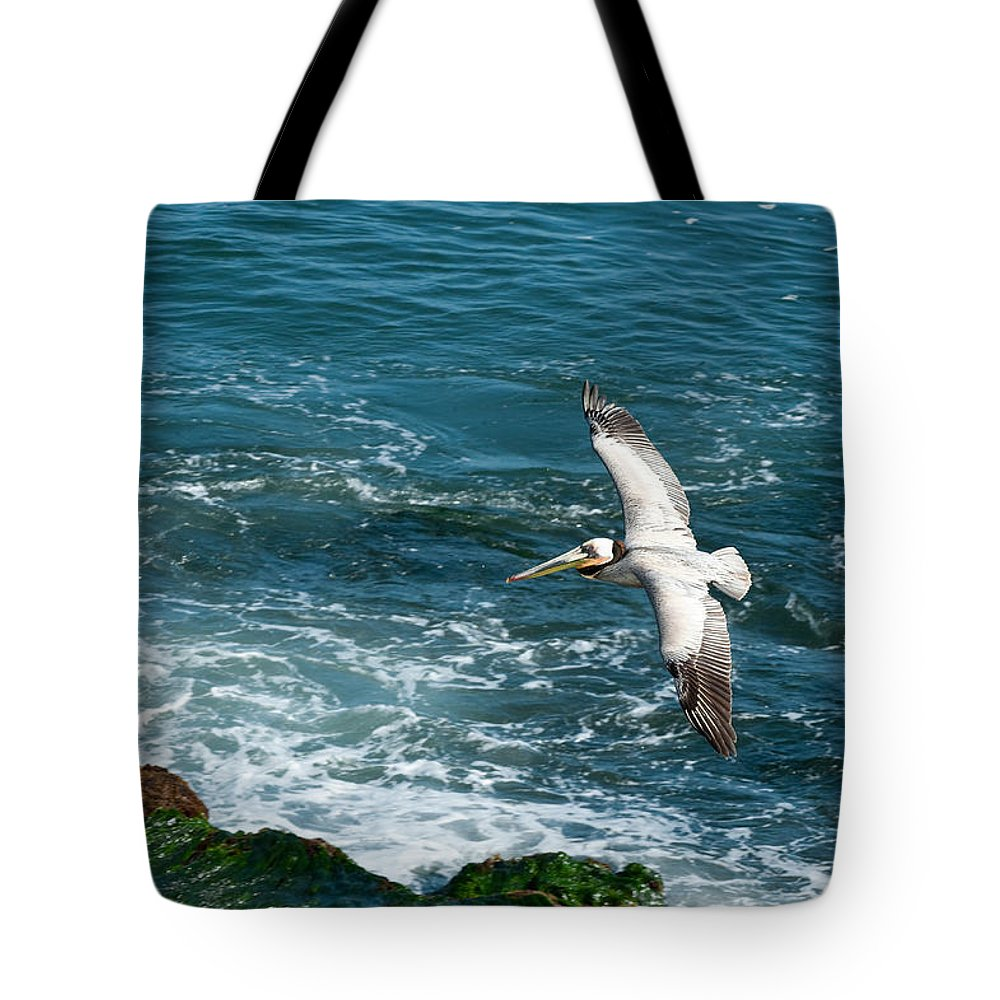 Wildlife Tote Bag featuring the photograph Coming In by Sandra Bronstein