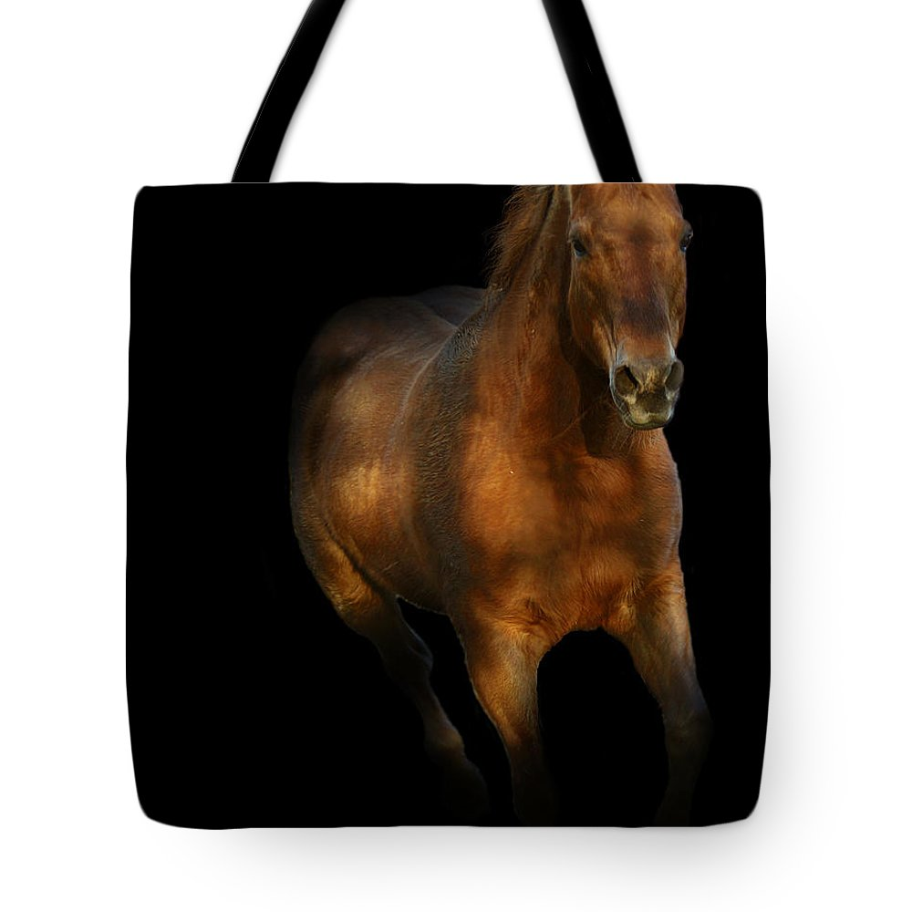Tote Bag featuring the photograph Coming Out Of The Dark by Jenny Gandert