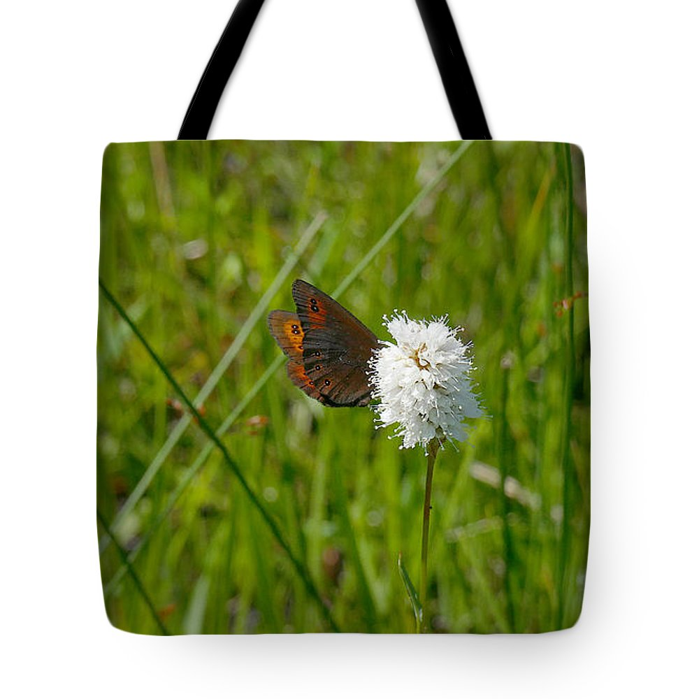 Ron Glaser Tote Bag featuring the photograph Common Alpine On Bistort by Ron Glaser