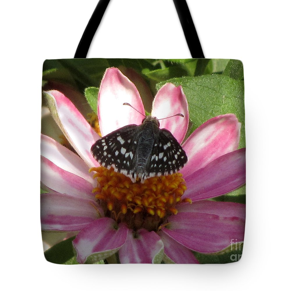 Insect Tote Bag featuring the photograph Common Checker Butterfly by Donna Brown
