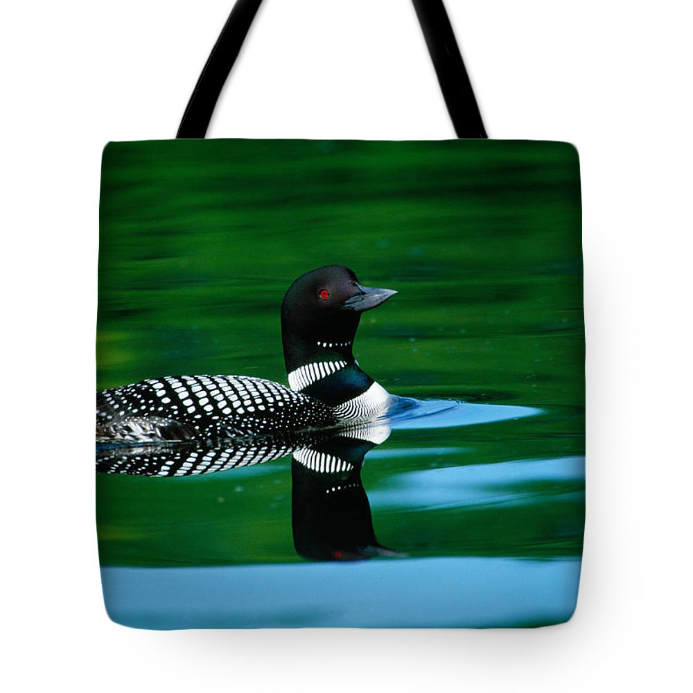 Loon Tote Bags