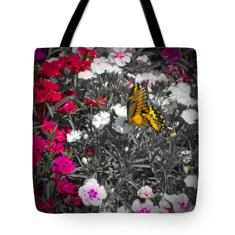 Butterfly Tote Bag featuring the photograph Competing Colors by Douglas Barnard