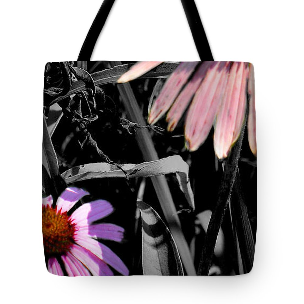 Purple Cone Flower Tote Bag featuring the photograph Cone Flower Tapestry by Steve Karol