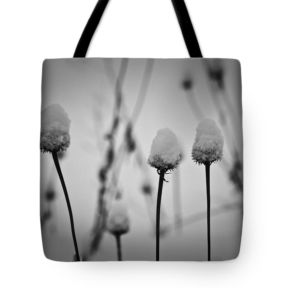 Coneflower Tote Bag featuring the photograph Coneflower Seedheads Covered In Snow by Teresa Mucha