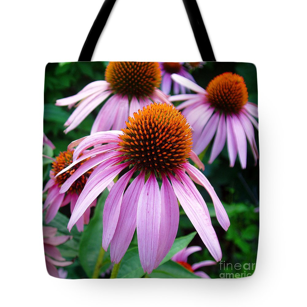 Coneflowers Tote Bag featuring the photograph Three Coneflowers by Nancy Mueller