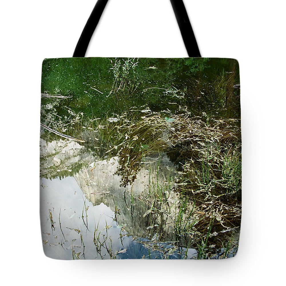 Mirror Lake Tote Bag featuring the photograph Confusion by Kathy McClure