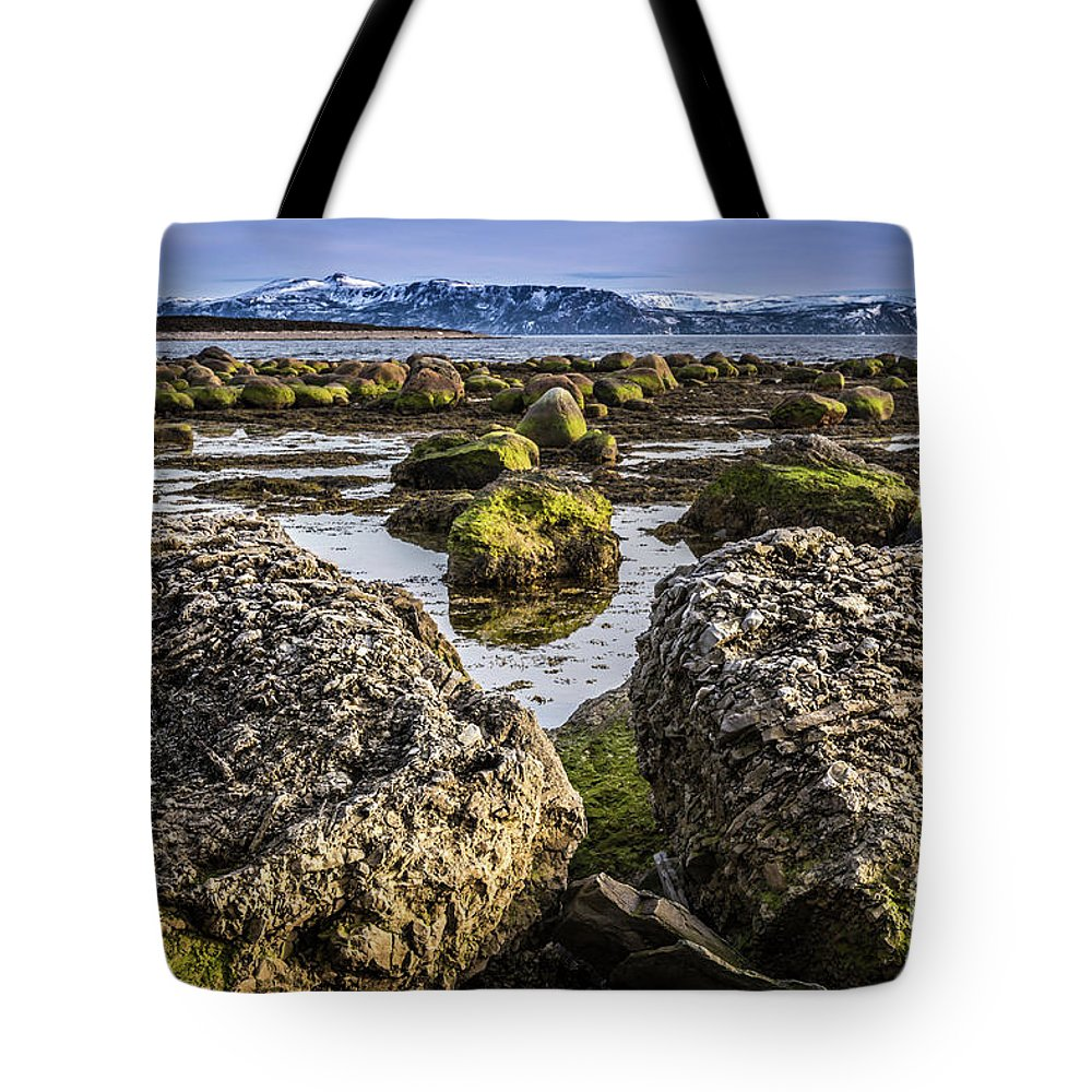 Boulders Tote Bag featuring the photograph Conglomerate Boulders, Green Point, Nl by Mike Organ
