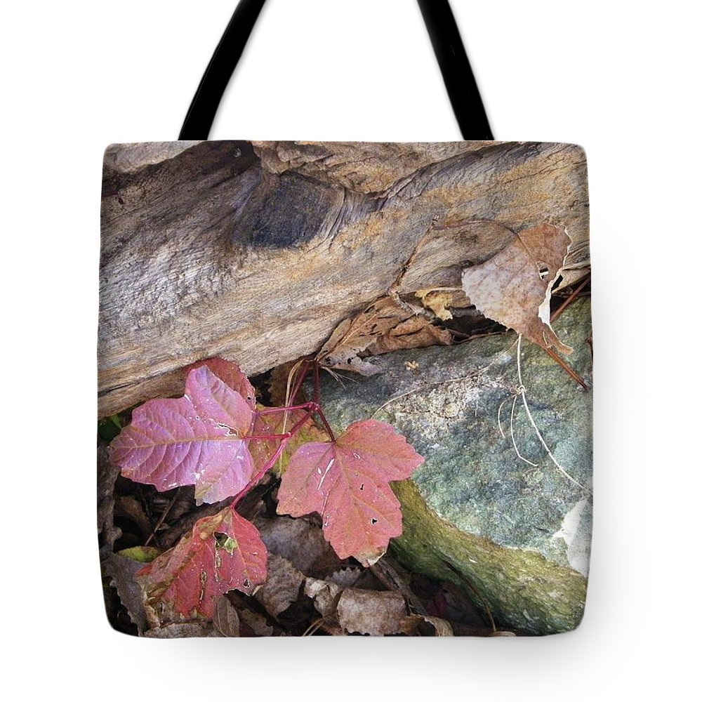 Nature Tote Bag featuring the photograph Congruence by Peggy King