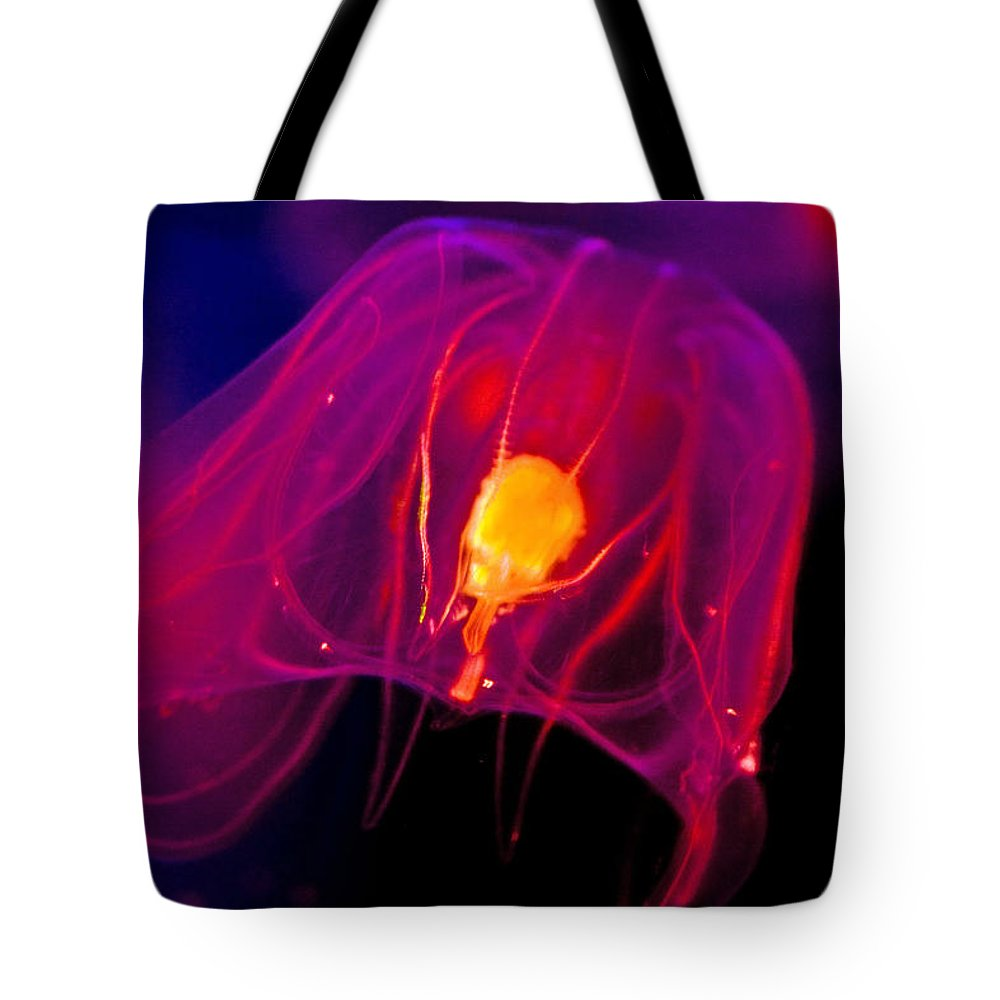 Ctenophor Tote Bag featuring the photograph Conscious by Mitch Cat