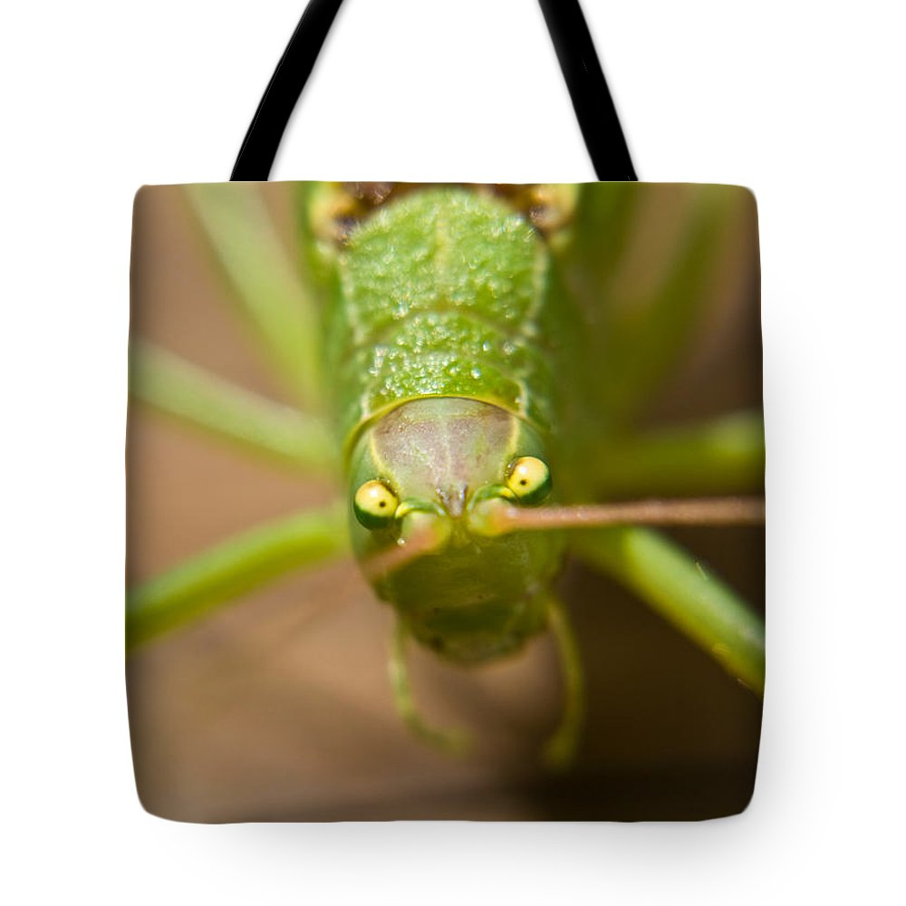Consternation Tote Bag featuring the photograph Consternation by Douglas Barnett