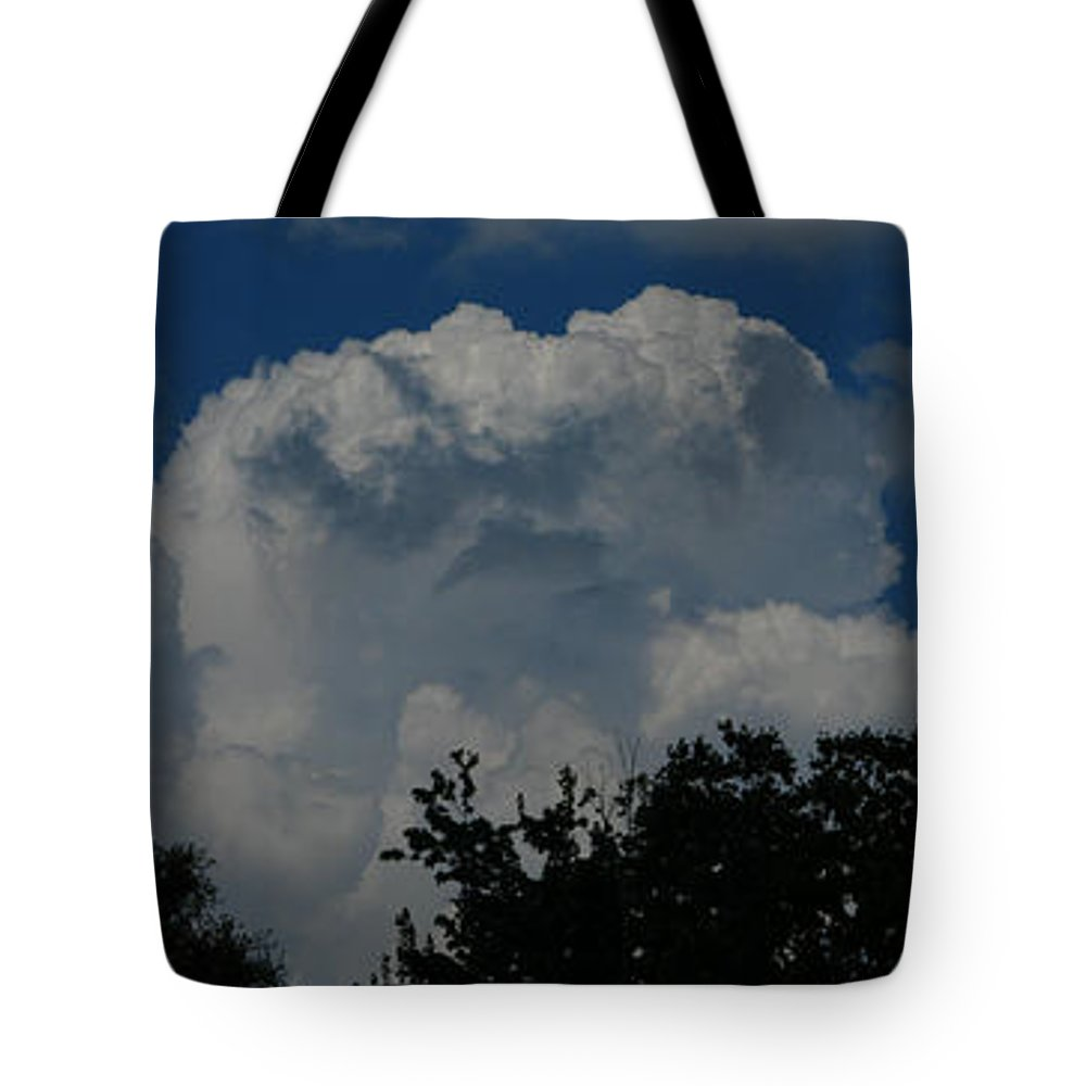 Patzer Tote Bag featuring the photograph Consult With Nature by Greg Patzer