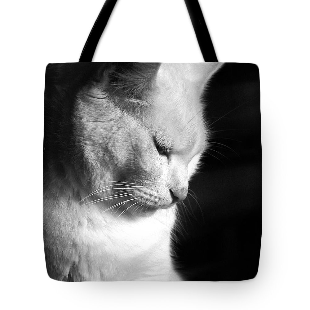 Nature Tote Bag featuring the photograph Contempation by Bob Orsillo