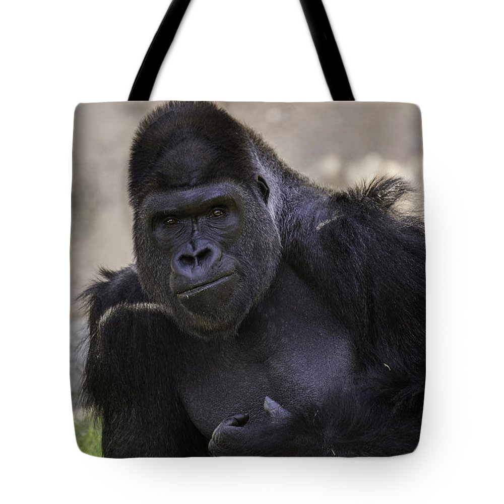 Gorilla Tote Bag featuring the photograph Contemplation by Terry Meek