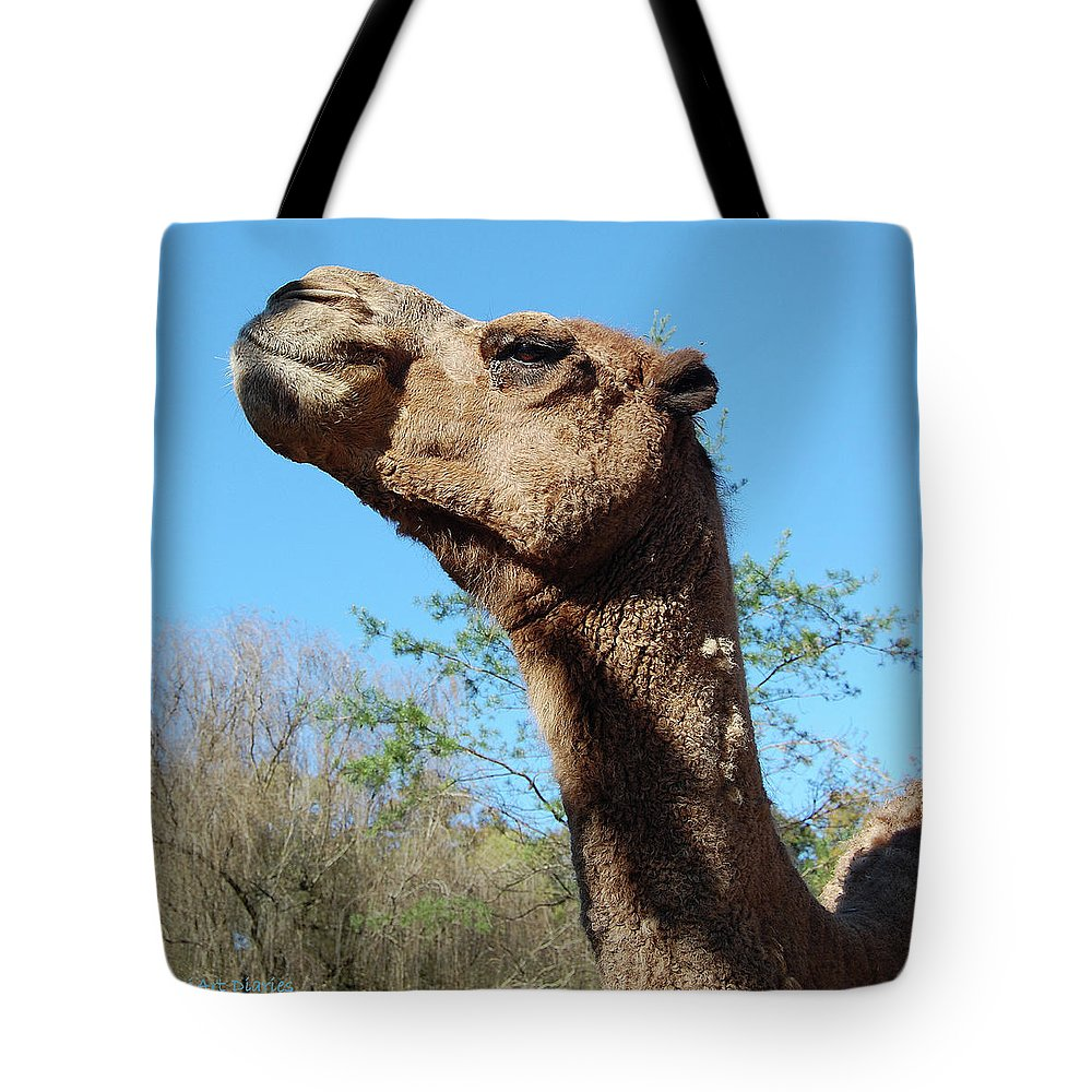 Camel Tote Bag featuring the digital art Contemptuous Camel by DigiArt Diaries by Vicky B Fuller