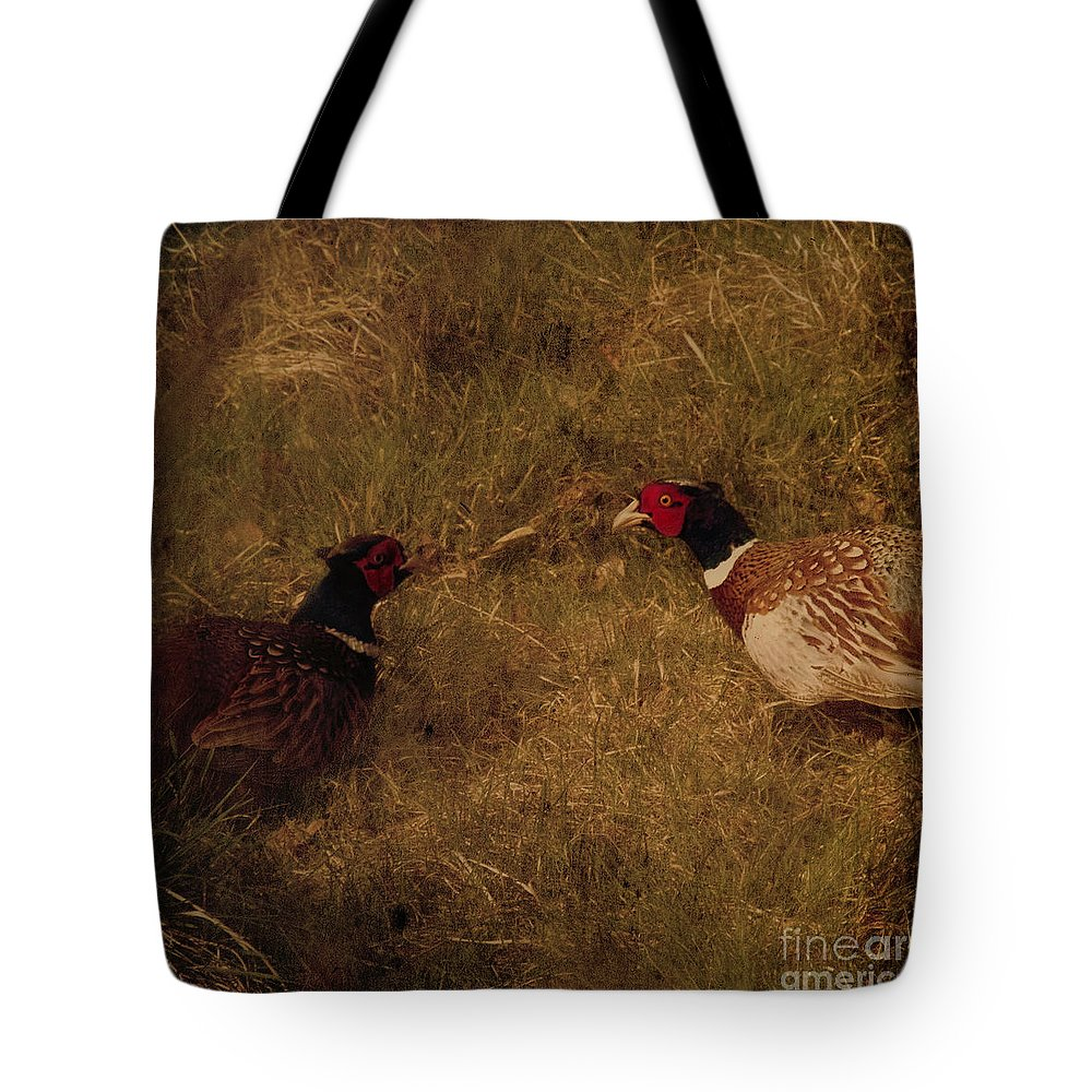Pheasant Tote Bag featuring the photograph Conversations by Angel Ciesniarska
