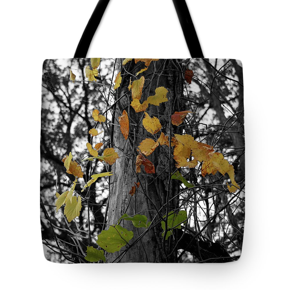 Color Desaturation Tote Bag featuring the photograph Convert by Dylan Punke