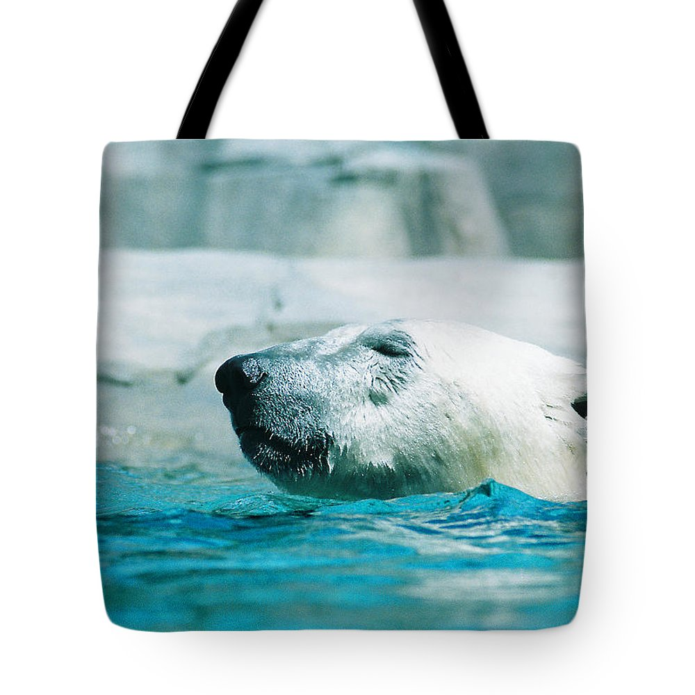 Polar Bear Tote Bag featuring the photograph Cooling Off by Steve Karol