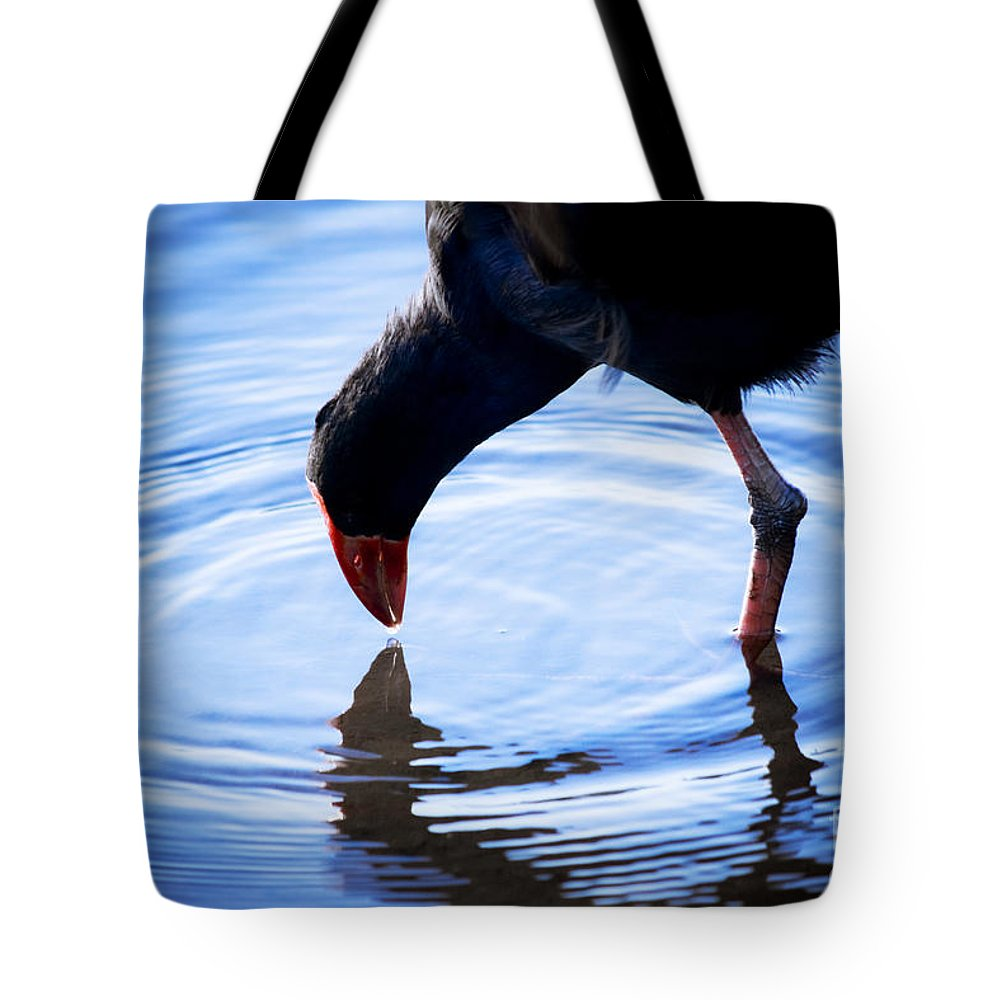Wildlife Tote Bag featuring the photograph Coot Pond Droplet by Jorgo Photography - Wall Art Gallery