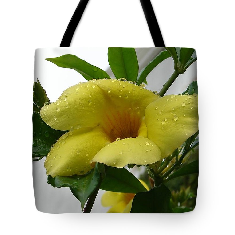 Yellow Water Drops Flower Green Leaves Tote Bag featuring the photograph Copa De Oro by Luciana Seymour