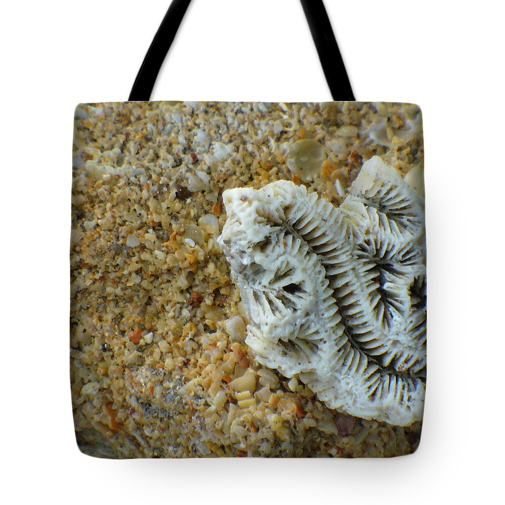 Coral Tote Bag featuring the photograph Coral Closeup by Peggy King