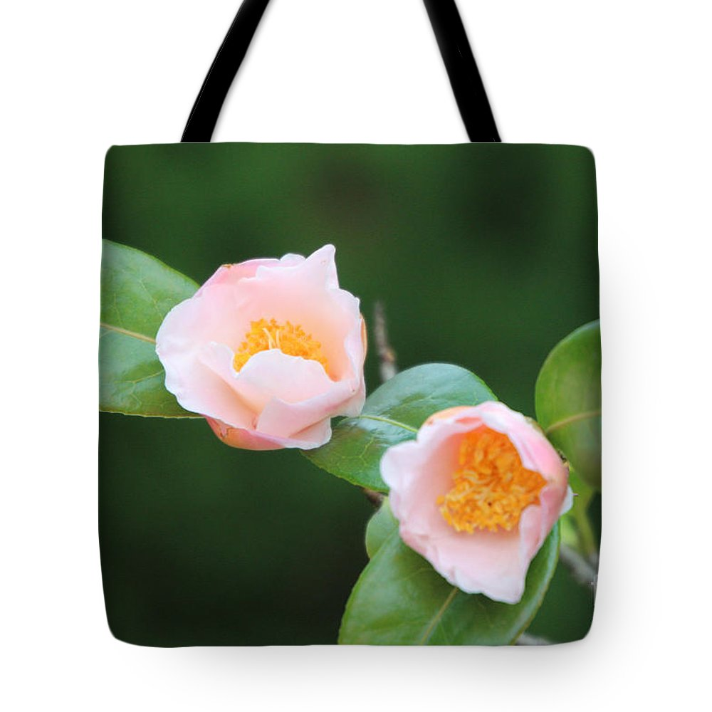 Coral Camellia Tote Bag featuring the photograph Coral Camellia 2 by Marta Robin Gaughen