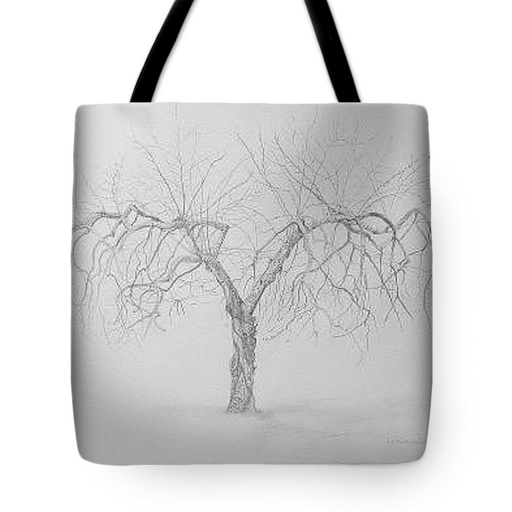 Cortland Apple Tree Tote Bag featuring the drawing Cortland Apple by Leah Tomaino