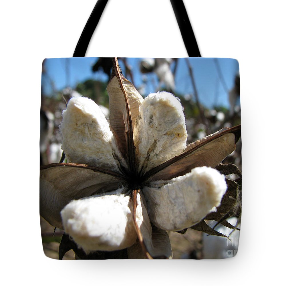 Cotton Tote Bag featuring the photograph Cotton by Amanda Barcon