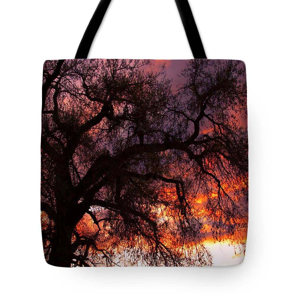 Silhouette Tote Bag featuring the photograph Cottonwood Sunset Silhouette by James BO Insogna