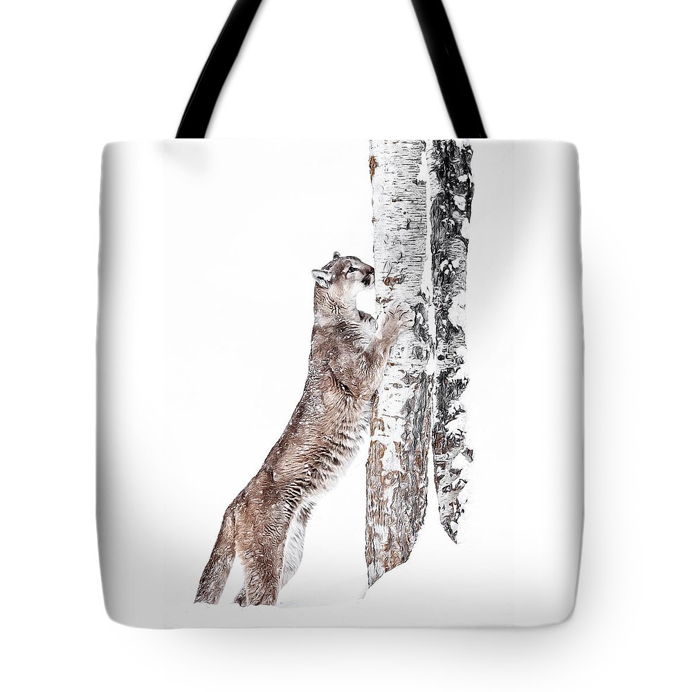Cougars Tree Tote Bag featuring the photograph Cougars Tree by Wes and Dotty Weber