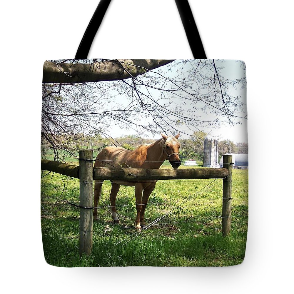 Horse Tote Bag featuring the photograph Country by Cassandra Dice