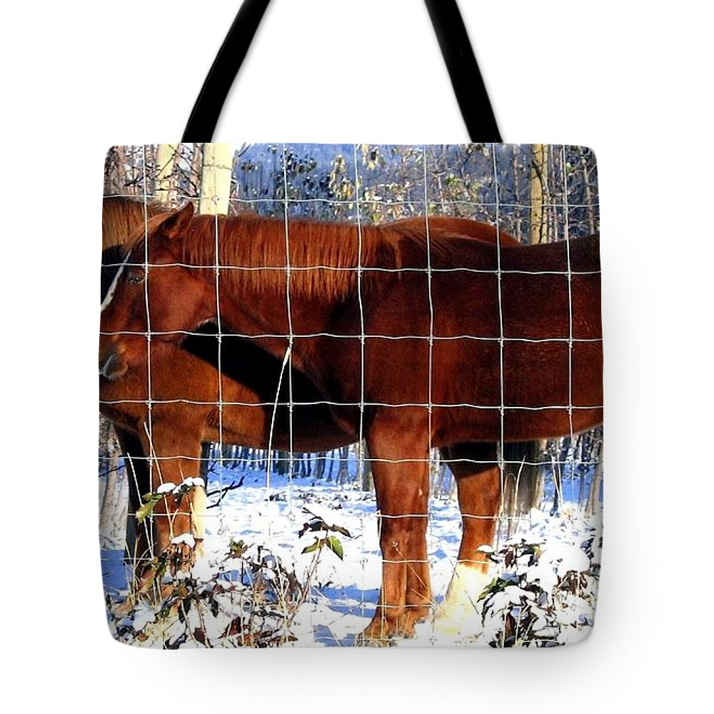 Horses Tote Bag featuring the photograph Country Pals by Will Borden