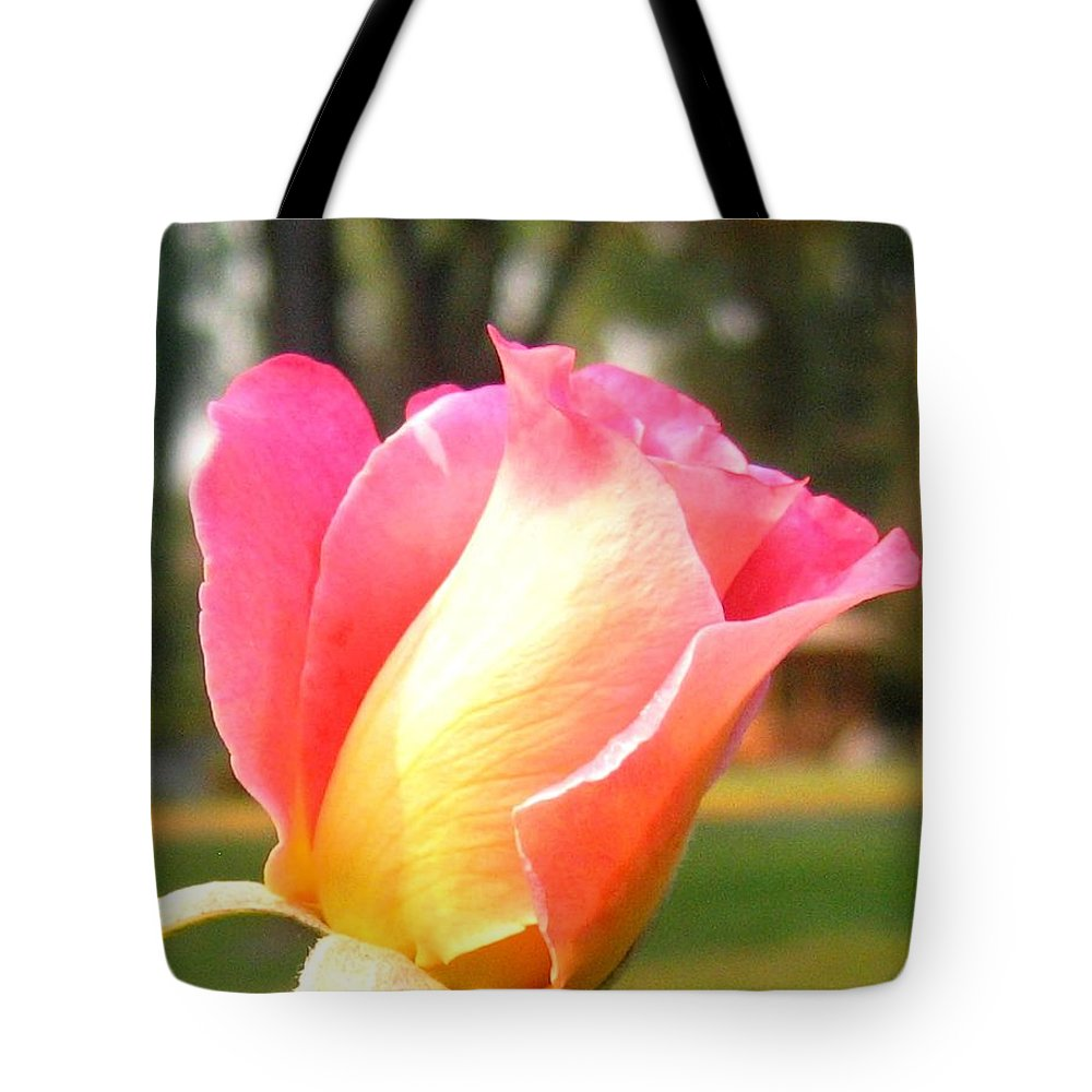 Rose Tote Bag featuring the photograph Country Rose by Will Borden