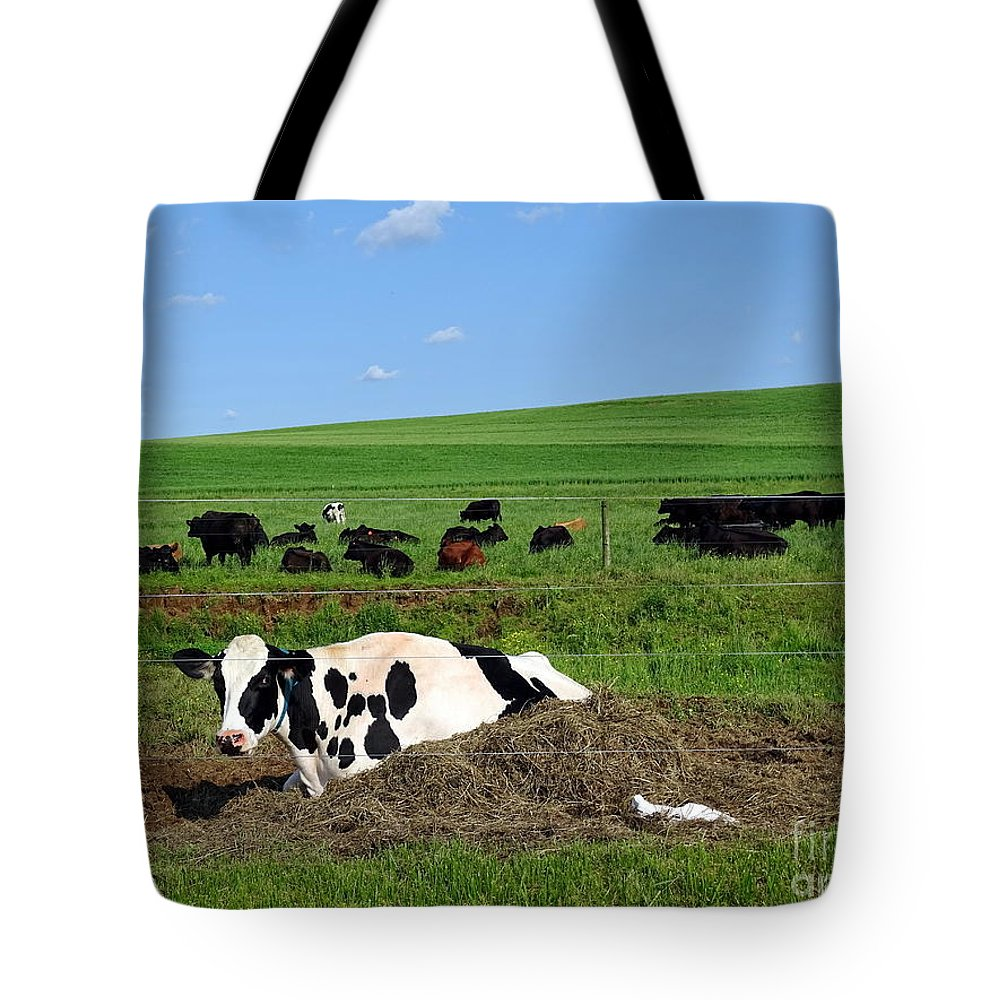 Farm Tote Bag featuring the photograph Countryside Cows by Ed Weidman
