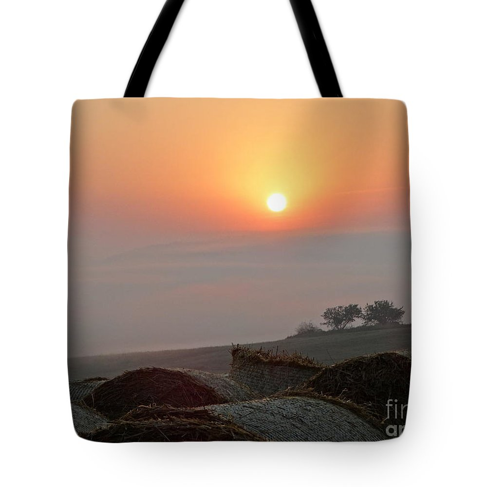 Tote Bag featuring the photograph Cow Farm Af by Dan Marinescu