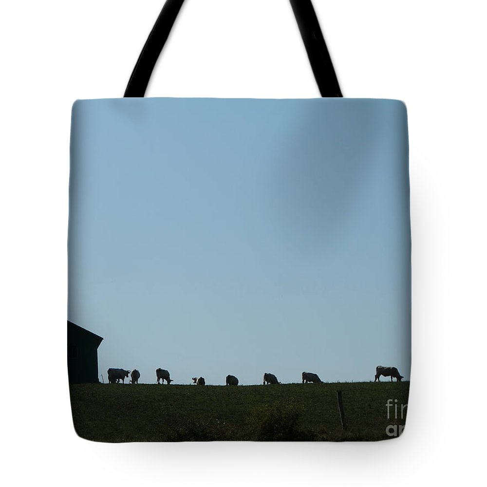 Tote Bag featuring the photograph Cow Farm Ag by Dan Marinescu